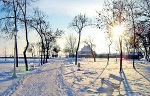 palic-zima-2010-a