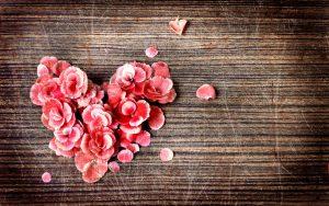 Rose-Petals-full-HD
